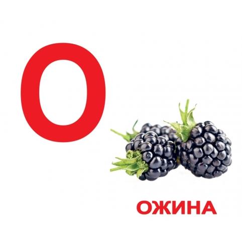 карточки Домана Алфавит на украинском купить Киев с доставкой по Украине