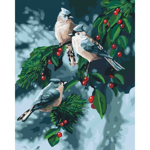 """Набір для розпису по номерах.Тварини, птахи """"Зимові пташки"""" 40*50см рис. 1"""