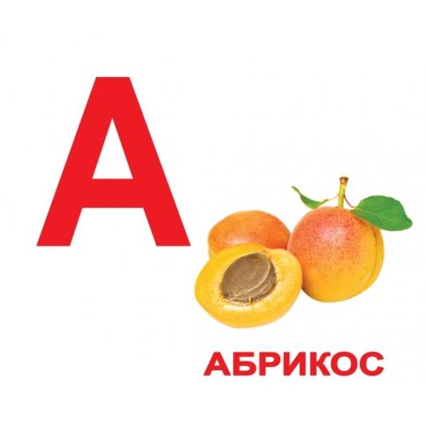 Большие карточки Домана Алфавит с фактами купить Киев Украина