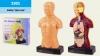 """Доктор """"Анатомия"""" 3301 (36шт2) макет тела и органов,в кор.32.5*7*31 см, р-р игрушки – 13*7.5*24 см рис. 1"""