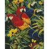 """Набір з алмазною мозаїкою """"Різнокольорові папужки"""" 40х50см рис. 1"""