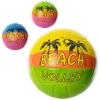 м'яч волейбольний  EV3205