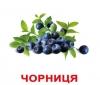 карточки Домана Ягоды на украинском Вундеркинд с пеленок купить Киев с доставкой