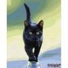 Картина за номерами - Котяча грація (06КНО42)