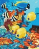 """Набір для розпису по номерах.Тварини,птахи""""Морське царство"""" 40*50 см(КНО4075)  (КНО4075)"""