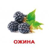 комплекты карточек Домана на украинском Вундеркинд с пеленок купить Киев с доста
