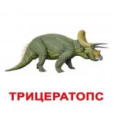 """Карточки Домана """"Динозавры"""" с фактами (трицератопс)"""