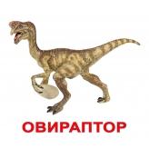 "Карточки Домана ""Динозавры"" с фактами (овираптор)"