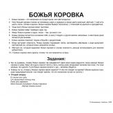 карточки Домана Насекомые с фактами Вундеркинд с пеленок купить Киев Украина